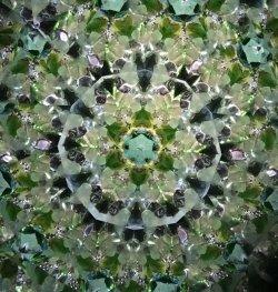 画像2:  『誕生石の万華鏡』 オイル万華鏡   5月 エメラルド